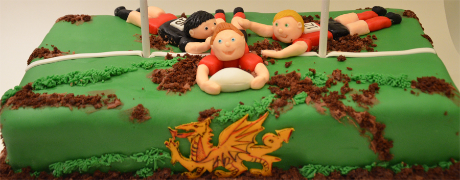Cake - Rugby Pitch